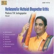 T N Seshagopalan M Bhagavathar Krithis Songs