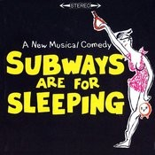 Subways Are For Sleeping Songs