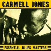 Essential Blues Masters Songs