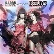 Birds (Boychick Remix) Song