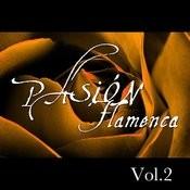 Pasión Flamenca Vol.2 Songs