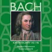 Bach, JS : Sacred Cantatas BWV Nos 143 - 146 Songs
