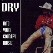 Into Your Country Music Songs