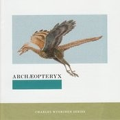 Archaeopteryx Songs