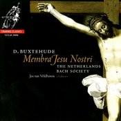 Membra Jesu Nostri, BuxWV 75: VI. Ad Cor -
