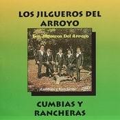 Cumbias Y Rancheras Songs