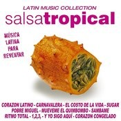 Salsa Tropical Songs