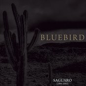 Saguaro (1995-2003) Songs