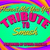 Haven't Met You Yet (Tribute To Smash) - Single Songs