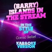 (Barry) Islands In The Stream (In The Style Of Comic Relief) [Karaoke Version] Song