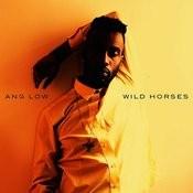 Wild Horses Songs