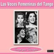 Una Mujer Song