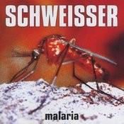 Pass Auf (Malaira X-Files) Song