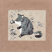 Possum Moods Songs