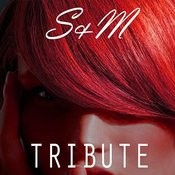 S&M (Rihanna Tribute) Song