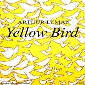 Yellow Bird Songs