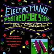 Psychedelic Seeds Songs