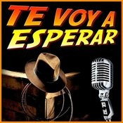 Te Voy A Esperar - Single Songs