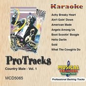 Achy Breaky Heart-1 (In The Style Of Billy Ray Cyrus (Karaoke Version Teaching Vocal)) Song