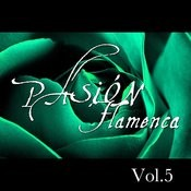 Pasión Flamenca Vol.5 Songs