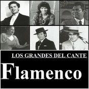 Los Grandes Del Cante Flamenco Songs