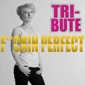 F**kin' Perfect - Single (Pink Tribute) Songs