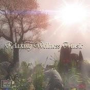 Relaxing Wellness Music Songs
