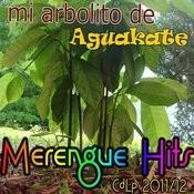 2011/12: Merengue Hits Songs