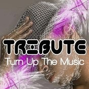 Turn Up The Music (Chris Brown Tribute) Song