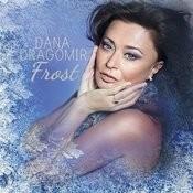 Frost - Pan Flute In Wintertime Songs