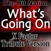 What's Going On - X Factor Tribute Version Songs