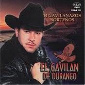 14 Gavilanazos Nortenos Songs