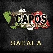 Sacala Songs