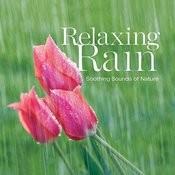 Relaxing Rain Songs