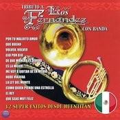 Tributo A Los Fernández ...Con Banda: 12 Super Exitos Desde Huentitan Songs