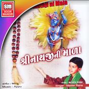 arji amari suno shreenathji mp3