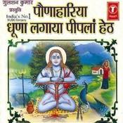Paunahariya Dhoona Lagaya Piplan Heth Songs