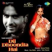 Dil Dhoondta Hai Songs