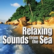 Relaxing Sounds from the Sea Songs