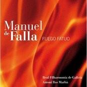 Fuego Fatuo - 12. - Iv. Molto Allegro Song