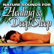 Relaxation And Meditation 15 Song