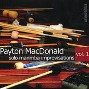 Solo Marimba Improvisations Vol. 1 Songs