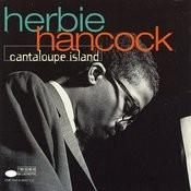 Cantaloupe Island Songs