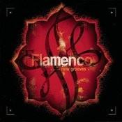 Flamenco New Grooves Songs