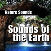 Sounds of the Earth (Nature Sound) Songs