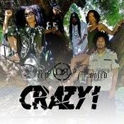 Crazy Songs