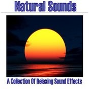 Natural Sounds - A Collection Of Relaxing Sound Effects Songs