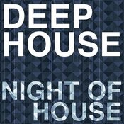 Night Of House Songs