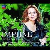 Daphne Songs