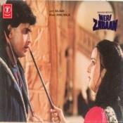 Meri Zabaan Songs